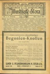 Illustrierte Flora